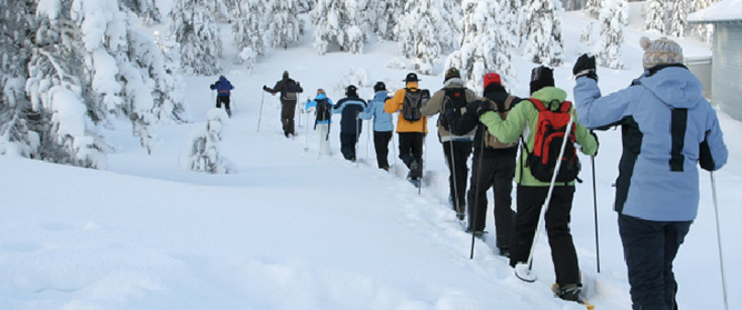 Line of Snowshoers