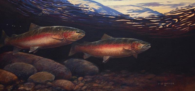 FredThomas-2017 - Salmon artwork