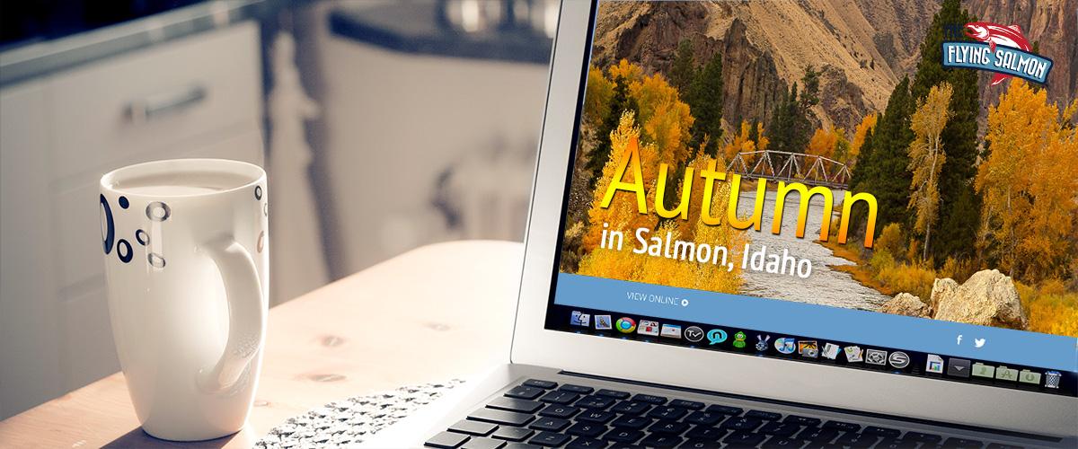 Fall Salmon Newsletter