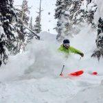 image: skier in powder