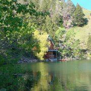Williams Lake Cabins